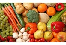 农产品生产及加工技术服务