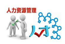 人力资源信息咨询服务