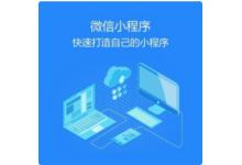 软件小程序开发