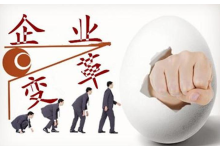 企业规划咨询服务