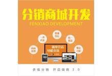 企业网站和应用商城开发服务