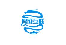 电子商务技术咨询服务