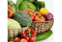 农生态产品技术培训服务